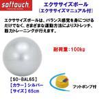 家トレグッズ softouch(ソフタッチ) エクササイズボール SO-BALL65 SLV 65cm