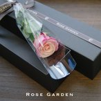 お祝い、結婚記念日や誕生日プレゼントに!メッセージカードOK