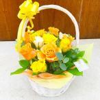 お見舞いのバラのアレンジメント セレクト(バラ18本)【お祝い・記念日・誕生日・フラワーギフト】 (生花)