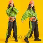 ダンス衣装 韓国 ヒョウ柄 グリーン パーカー 女の子 ヒップホップ HIPHOP セットアップ トップス パンツ へそ出し  練習着