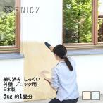 簡単練漆喰 ブロック用5kg tsk |  左官道具 施工用品 塗り壁 コンクリート 屋根用塗料 壁紙 リフォームペイント 部屋 diy 塗装