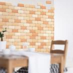 ショッピングレンガ かるかるブリック100枚セット tsk |  ベランダ マット 床 壁材 左官 施工用品 レンガタイル 壁タイル 部屋 diy 塗装