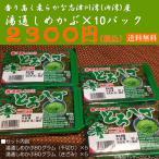 志津川湾産湯通しメカブ10パックセット