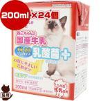 送料無料・同梱可 ねこちゃんの国産牛乳 乳酸菌プラス 200mL×24個 ドギーマンハヤシ ▼a ペット フード 猫 キャット ミルク