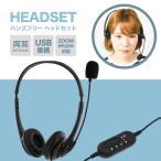ヘッドセット 両耳 ヘッドホン マイク マイク付き USB USB接続 テレワーク ZOOM スカイプ 対応 ハンズフリー PC オンライン 有線