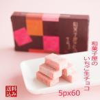 お中元 サマーギフト 敬老の日 プレゼント 和菓子 高級 ありがとう お誕生日 /  いちご生チョコレート 5ピースx60箱
