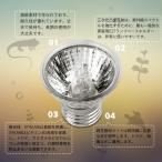 友家(ユカ)保温電球 爬虫類照明 ライト 両生類用ライト UVA/UVBハロゲンランプ フルスペクトル カメ ランプトカゲランプ 生息地照明