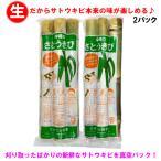 沖縄県産さとうきび(サトウキビ)(食用)2パックセット