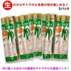 沖縄県産さとうきび(食用)5パックセット