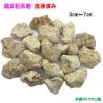 琉球石灰岩小粒タイプ3cm-7cm 800g