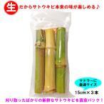 沖縄県産さとうきび(サトウキビ)(食用)15cmパック