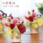 プリザーブドフラワー プレゼント ギフトブリザード 退職祝い 送別 猫 ねこ 誕生日 女性 動物 花 ランキング ネコ ハピネコ