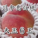 桃 もも  送料無料 本場長野県 川中島白桃  2kg 特秀品大玉6玉