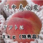 お中元 御中元 ギフト 桃 もも 夏ギフト 長野県 川中島白鳳 約3kg 特秀品 7-10玉  送料無料