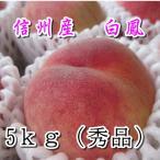お中元 御中元 ギフト桃もも ご家庭用に  もも 川中島白鳳 5kg秀品 送料無料  信州の桃と言えば,やっぱり川中島白鳳です