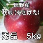 信州 秋映(あきばえ)秀品5kg(14玉〜18玉)信州特産品種 【送料無料】  【長野 りんご】