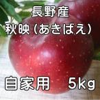 自家用 信州特産品種 訳あり 秋映(あきばえ)5kg(14玉〜20玉)長野 りんご