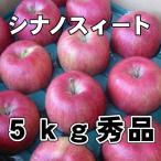 信州産 秀品シナノスイート 5kg(11玉〜18玉)(送料無料) 長野 りんご長野 シナノスイート