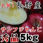 お歳暮No1長野 サンふじりんご 送料無料  秀品 信州産 5kg11玉〜18玉長野サンふじりんご