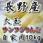 長野 サンふじりんご大玉 限定10kg 訳あり 送料無料 こだわり信州産サンふじりんご ご家庭用