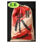 お米 米2年お米 10kg送料無料 玄米 長野県 佐久平産コシヒカリ玄米特A米10Kg