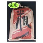 米 お米 10kg29年度米 玄米 送料無料 長野県産(飯山産)こしひかり特A米玄米10kg