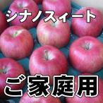 信州産 シナノスイート 約10kg(自家用・訳あり)( りんご長野 シナノスイート)