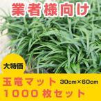 玉竜(タマリュウ)マット 1000枚セット【業販】