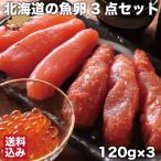 北海道 魚卵 3点セット 120g×3 ( たらこ 明太子 いくらしょうゆ漬け ) 噴火湾 鹿部町 小分 無添加 国産 丸鮮道場水産 送料無料
