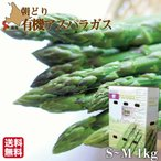 蘆筍 - 期間限定 グリーンアスパラ 北海道 無農薬 有機栽培 S-M 1kg 朝採れ 産直 農園直送 送料無料
