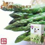 予約受付 5月中旬より発送《期間限定》 グリーンアスパラガス 北海道 無農薬 有機栽培 M-L 1kg 朝採れ 産直 農園直送 ギフト 送料無料