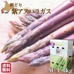 蘆筍 - 期間限定 紫アスパラガス 北海道産 無農薬 有機栽培 M-L 1kg 朝採れ 産直 農園直送 送料無料