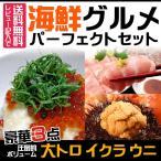 <送料無料>海鮮グルメセット 大トロ うに いくら(冷凍便同梱可)