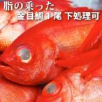 金目鲷 - 【お中元/ギフト】<金目鯛(きんめだい・キンメダイ)1尾1kg以上>上物!【冷凍・冷蔵便同梱可】