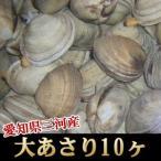 【業務用】【お中元/ギフト】<大あさり10ヶ>巨大!愛知県三河産名物!【冷蔵便同梱可】