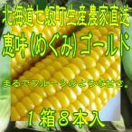 北海道七飯町生産農家直送 恵味(めぐみ)ゴールド (黄色いとうもろこし) LLサイズ 8本入1箱