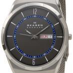 スカーゲン SKAGEN メンズ 腕時計 SKW6078 Aktiv Mesh Titanium アクティブ メッシュ チタニウム グレー×シルバー ブランド