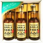 3本セット!もりやま園 テキカカアップルソーダ 330ml瓶 クール推奨 贈答箱入 ノンアルコール 炭酸飲料 アップルジュース