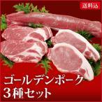 お歳暮 肉 ギフト 送料込 3GFA 国産 豚肉 銘柄豚 牧場 産直 ゴールデンポーク 御歳暮 お歳暮ギフト