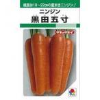 人参の種 黒田五寸 1L缶 ( 野菜の種 )