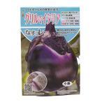 ナス 種 グリルでイタリア 小袋(20粒) ( 種 野菜 野菜種子 野菜種 )