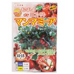 トマト 種 そのまんまdeミニトマト マンマミーア 小袋(15粒) ( 種 野菜 野菜種子 野菜種 )