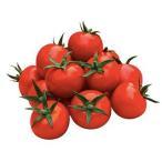 ミニトマトの種  TY花鳥風月  小袋(15粒) ( 野菜の種 )