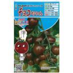 ミニトマトの種 チョコちゃん  8粒 ( 種 野菜 野菜種子 野菜種 ) ( 野菜の種 )