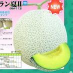メロンの種 アールスムーラン夏II 100粒 ( 野菜の種 )