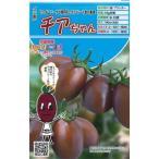 ミニトマトの種 チアちゃん  8粒 ( 種 野菜 野菜種子 野菜種 ) ( 野菜の種 )