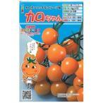 ミニトマトの種 カロちゃん 8粒 ( 種 野菜 野菜種子 野菜種 ) ( 野菜の種 )