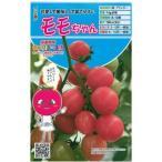 ミニトマトの種 モモちゃん  8粒 ( 種 野菜 野菜種子 野菜種 ) ( 野菜の種 )
