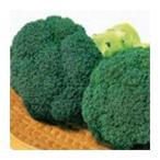 ブロッコリーの種 緑帝 食彩小袋 ( 野菜の種 )