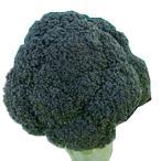 ブロッコリーの種 和麟 2000粒 ( 野菜の種 )